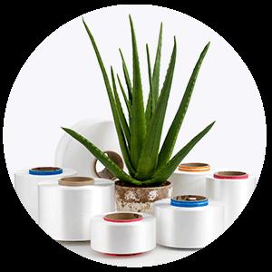 Sustainable Nylon 6 recycled yarns
