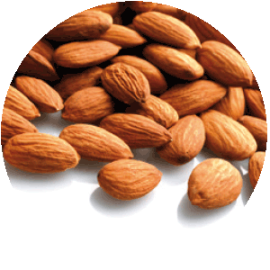 Novarel Natural Care Ingredients: Sweet Almond Oil